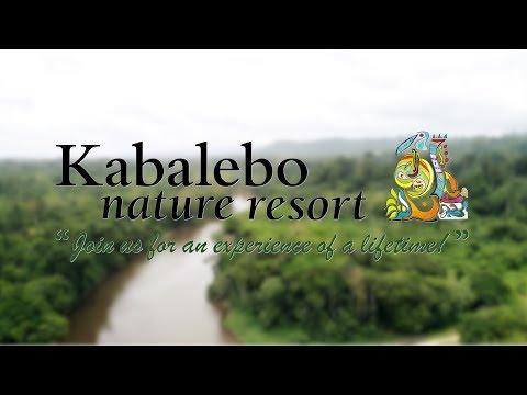 Nature at its purest: Kabalebo Suriname