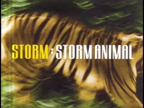 STORM: STORM ANIMAL (ORIGINAL CLUB MIX) HIGH QUALITY