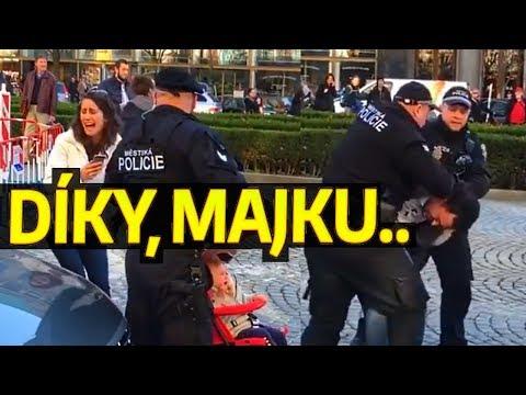 TĚHOTNÁ KRÁVA vs POLICIE PRAHA 1 aneb dědictví MikeJePan [reakce]
