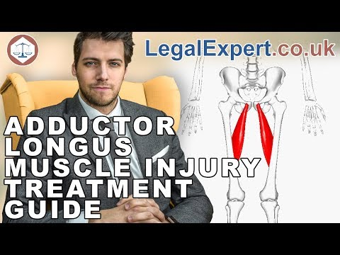 Adductor Longus Muscle Injury Treatment Guide ( 2019 ) UK