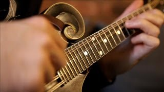How Mandolin 'Genius' Will Spend $500,000