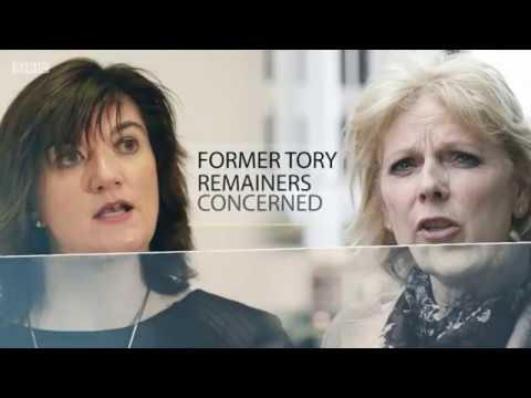 BBC Daily Politics - John Mills, Chair Labour Leave talks: Brexit, Transitional Deal & Immigration