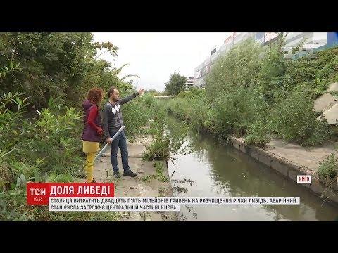 Київ витратить 25 мільйонів гривень на розчищення річки Либідь