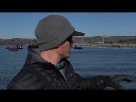Hank Cherry fishing the 2020 Bassmaster Classic
