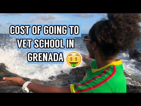 cost-of-going-to-school-in-the-caribbean-|-sgu-vet-school