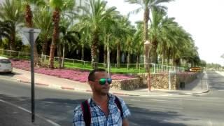 Свадебное путешествие в Израиль