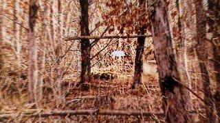 Barren Fork Muzzleloaders Club - The Woods Walk