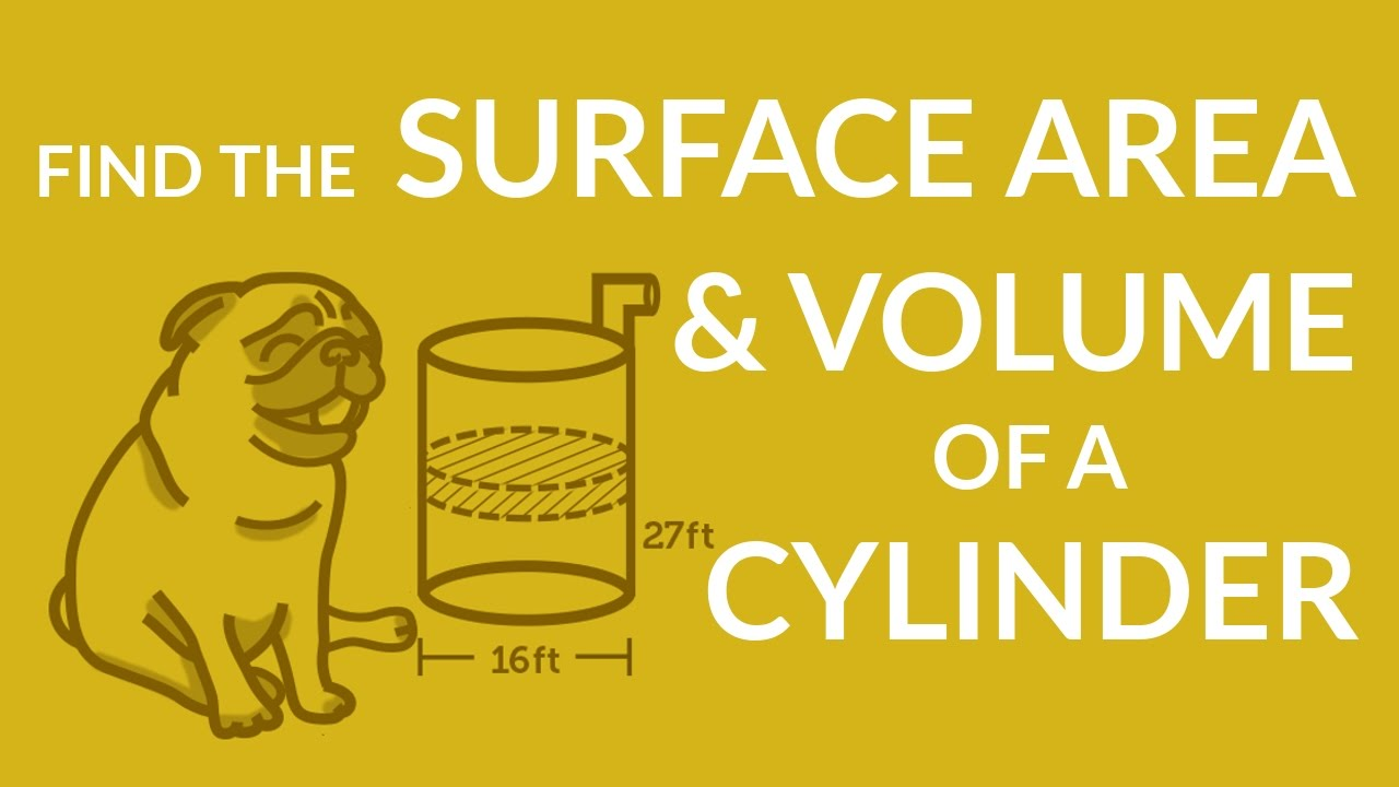 ʕ•ᴥ•� Find Surface Area And Volume Of A Cylinder Using Simple Formulas