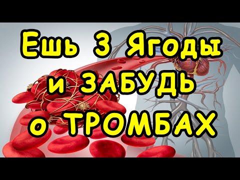 Эти 3 ягоды ПОЗВОЛЯТ НАВСЕГДА ЗАБЫТЬ о ТРОМБАХ и ГУСТОЙ КРОВИ 👍 Это НАДО ЗНАТЬ !