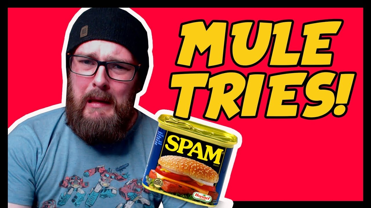 A MAN AND HIS SPAM! - Mule Tries