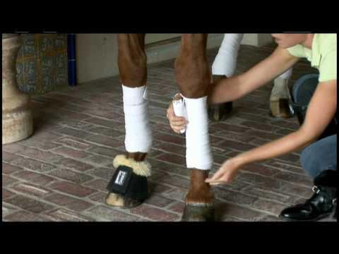 leren bandageren  Doovi