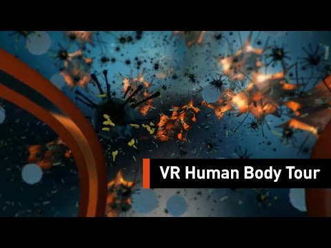 Take A Tour Of The Human Body With The Help Of Virtual Reality