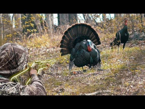6 GOBBLERS IN 16 MINUTES