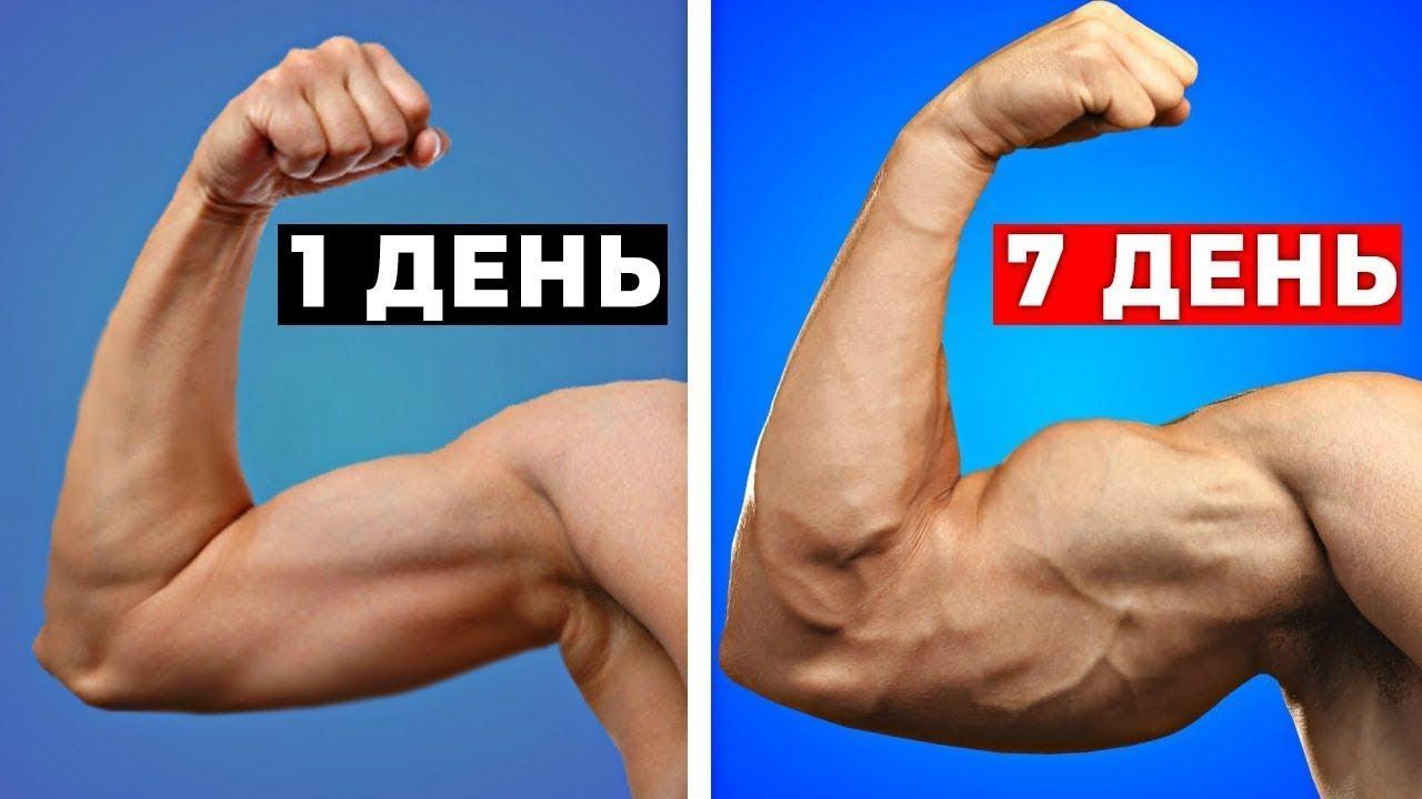 10 Способов Быстро Накачать Бицепс | Как Быстро Накачать Руки в Домашних Условиях Тренировка Мышц Рук