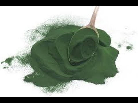Meat Is Not The Only Protein Try  Spirulina