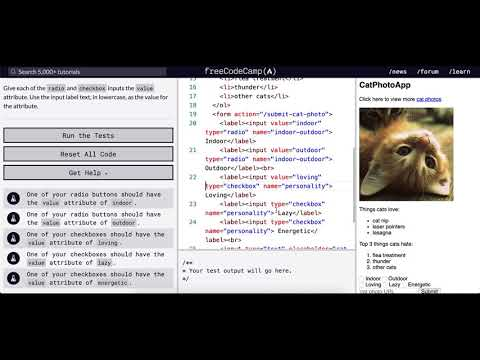 Basic HTML And HTML5 Use The Value Attribute With Radio Buttons And Checkboxes Free Code Camp