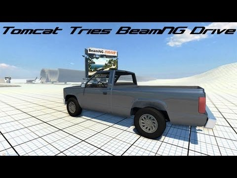 Tomcat Tries BeamNG Drive