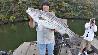EastTNFishing: 3 Striped Bass and a Drone - GoPro Trophy Fishing