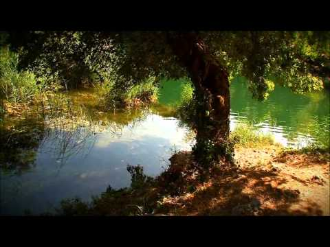 Tangerine Dream - Waterborne