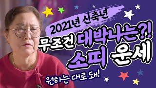 2021년 신축년 무조건 대박나는 소띠운세?! ''소띠운세가 가장 대박나는띠!''…