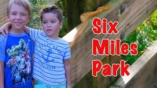 Тема с друзьями в парке Флориды Six Miles Park Fort Myers