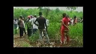 Programme DONATA : diffusion des nouvelles technologies agricoles en Afrique