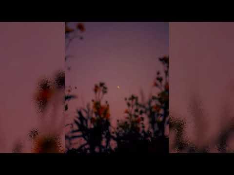 (Free For Profit WITH HOOK) Caught A Star - ARINA (prod. CapsCtrl)( Xxxtentacion Lilpeep Type Beat)