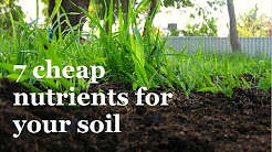 7 Super Cheap ways to add Nutrients to your Soil