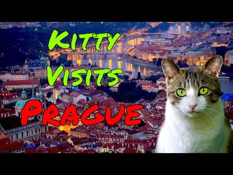Kitty Visits Prague the capital of Czech Republic