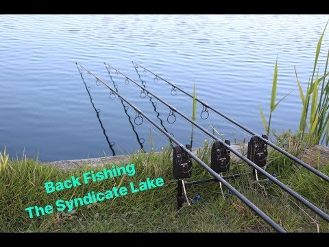 Back Fishing The Syndicate Lake