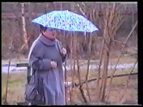 1995_Мегион. прогноз погоды июнь