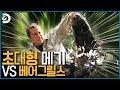 KIM호기 - YouTube