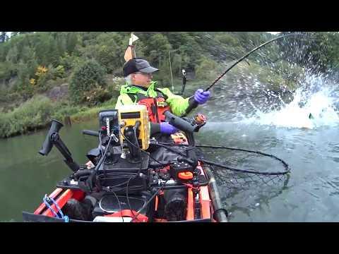 Siuslaw Kayak Salmon Fishing: 9/13/2018 King