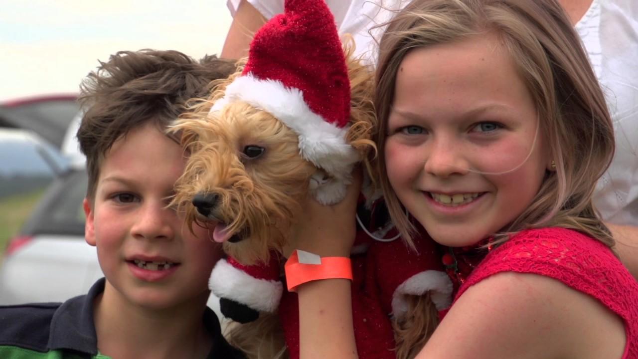 12 Barks of Christmas Carols - YouTube