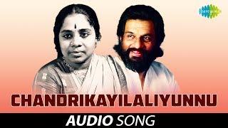 Chandrikayilaliyunnu Audio Song   Bharyamar Sookshikkuka   K.J. Yesudas, P. Leela Hits