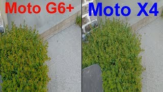 Moto G6 Plus Vs Moto X4 Camera Test