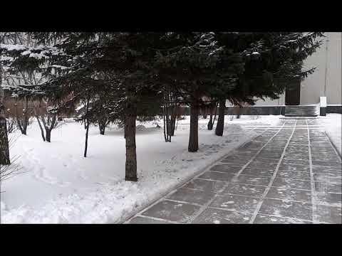 Погода каждый день Иркутск, Irkutsk, 30.11.2017, Микрохирургия ...