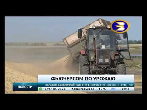 Башкирское зерно предлагают продавать через товарную биржу
