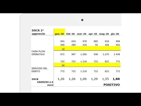 DSCR Software Excel indici crisi impresa per PMI e Commercialisti