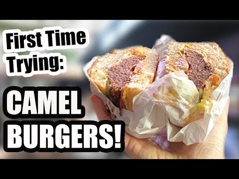 AMAZING Muslim Street Food In SYDNEY | Lakemba Ramadan Night Markets 2019