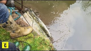 Magnet Fishing Under Bridges - Big Find Lands Dad In The Canal