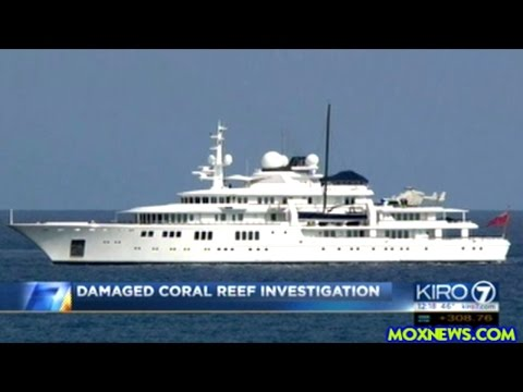 Report Paul Allen's MEGA Yacht Damaged Protected Coral Reef In Caymans Islands