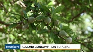 A Taste for Almonds: Demand Clashes With Drought
