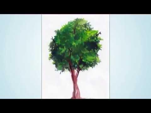Menggambar Mewarnai Pohon Dg Cat Air Youtube