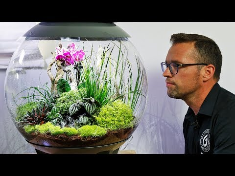 BiOrb AIR 60 - Full Step By Step Tutorial Terrarium Scape
