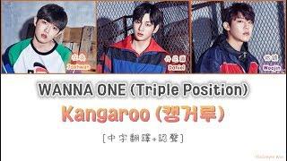 [中字翻譯+認聲] WANNA ONE (워너원) - Kangaroo (캥거루) (Prod. ZICO)