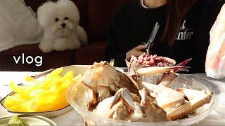 (SUB)오눅 브이로그. 새해가 되자마자 방구석에서 떡볶이 먹고. 영국에서 온 손님. 가성비 갑 간장게장 사냥. 10년지기 친구들의 방문. 피지 부자의 클렌징팁까지.