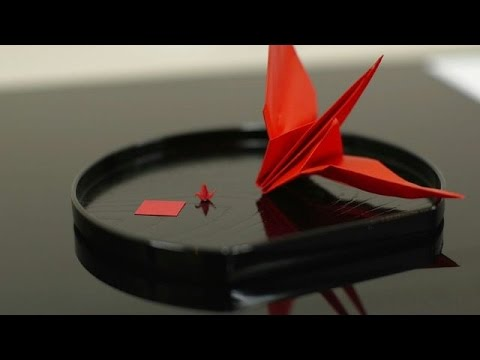 Future Japanese doctors tested with origami