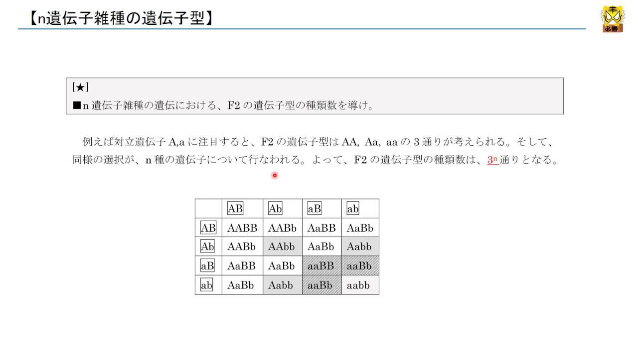 n遺伝子雑種の遺伝子型 【高校生...