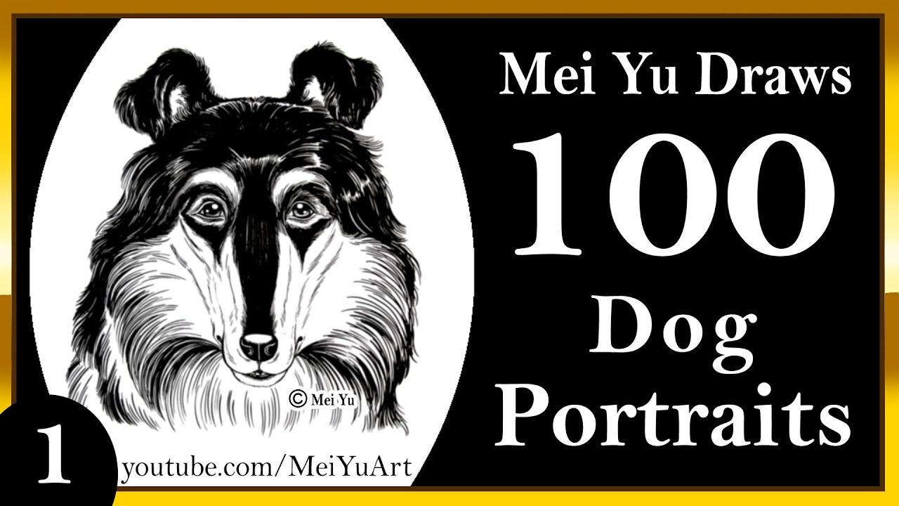 100 drawings challenge mei yu draws 100 dog portraits 1 100 drawings challenge mei yu draws 100 dog portraits 1 collie meiyuart ccuart Images